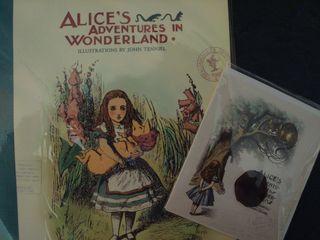 Alice 017
